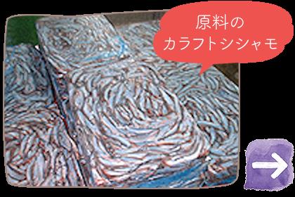 原料のカラフトシシャモ